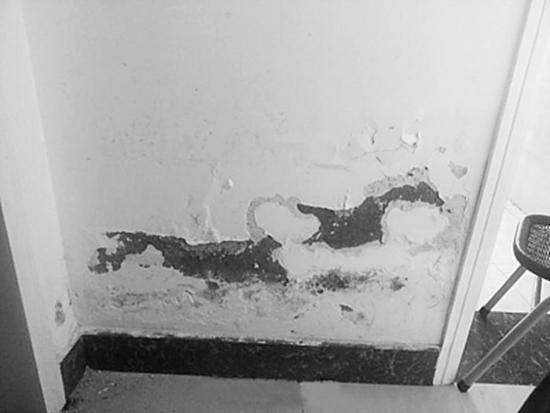 房屋漏水如何处理,房屋漏水什么原因引起的?