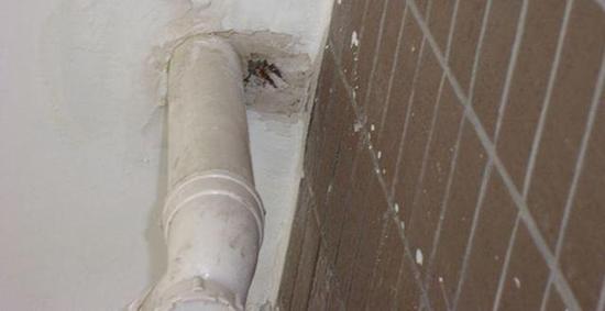 下水管漏水定位,下水管漏水是什么原因?