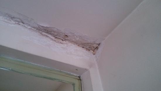 屋顶漏水点检测方法,屋顶漏水检测公司哪家好?