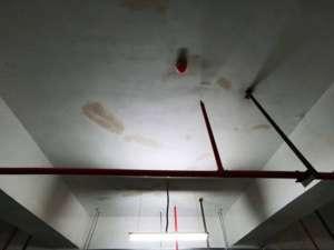 来宾室内漏水怎么维修_楼房四面漏水找谁维修